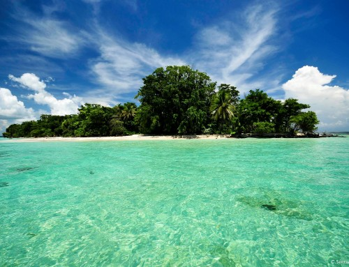 Isla Zapatilla – #3 Most Beautiful Beaches in Bocas del Toro