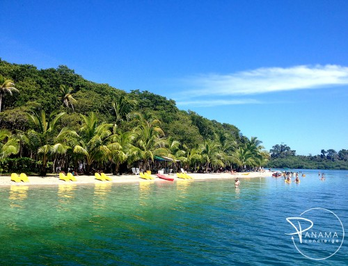Starfish Beach – #4 Most Beautiful Beach in Bocas del Toro (Playa Estrella)