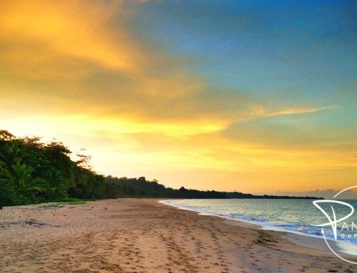 Bluff Beach (Playa Bluff) – #2 Most Beautiful Beaches in Bocas del Toro